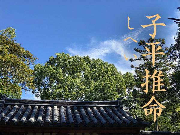 banner_shihei